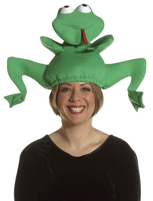 Convert A Boring Day Into Fun And Style Using Funny Hats  93cab5a4967d